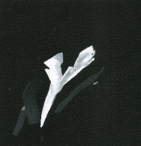 BN April16 006